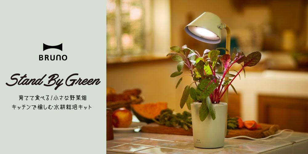 水耕栽培キット STAND BY GREEN