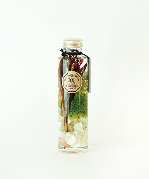 HERBARIUM (GLASS BOTTLE)BEACH